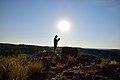 Mapungubwe, Limpopo, South Africa (20355878508).jpg