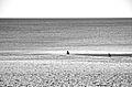 Mar e areia (8441098229).jpg