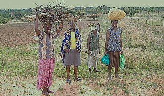Maranda, Zimbabwe - Back from gathering firewood in the forest, women in one of the villages in Maranda smile at the camera as they walk home, 2006