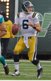 Mark Sanchez (cropped).png