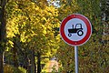 Matīši, Rudens. Autumn - panoramio.jpg