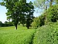 Meadow footpath - geograph.org.uk - 1335506.jpg