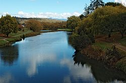 Meander-Deloraine-20070422-036.jpg