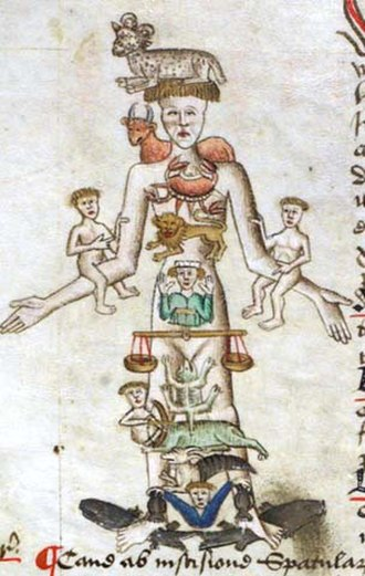 John Arderne - Image: Medical Zodiac Man (detail)