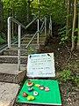 Memory Spot at Taylor Creek Park - 20200806.jpg