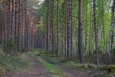 Mustoja Nature Park