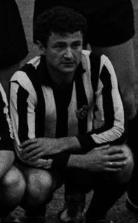 Milan Galić Serbian footballer