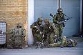 Militarovning Joint Challenge i ahus hamn, Sverige (3).jpg