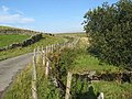Minor road near Carreg-y-blaidd - geograph.org.uk - 964405.jpg
