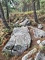 Moaña petroglidos de Pedra Furada.jpg