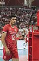 Mojtaba Mirzajanpour IRN WC 2014.jpg