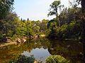 Morikami Museum and Gardens - Yamato Island Landscape 01.jpg