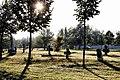 Morning Colors, Balastya - panoramio.jpg