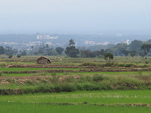 Moshi, Tanzania - Moshi Town as seen from Lower Moshi rice fields