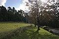 Mount Wilson NSW 2786, Australia - panoramio (48).jpg