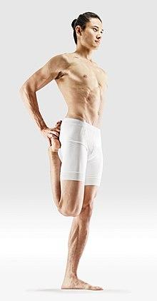 220px Mr yoga standing borth arms to foot yoga asanas Liste des exercices et position à pratiquer