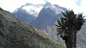 Mount Speke - Mt. Speke as seen from Uganda
