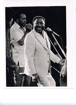 Muddy Waters (with James Cotton) (7495733)