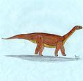 Mussaurus.jpg