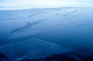 NOAA Ross sea.jpg