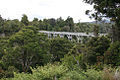 NZ Percy Burn Viadukt.jpg