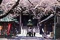 Nakayama Hokekyo-ji temple, Ichikawa, Chiba, Japan; April 2014.jpg