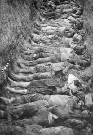 Armenian–Tatar massacres of 1905–07 - Nakhichevan, the corpses of Armenians after the May massacre.