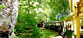 National Park Bükk,Unesco.jpg