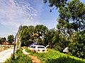 Natura Parc - panoramio (8).jpg