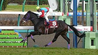 Nikkei Sho - 2012 Nikkei Sho