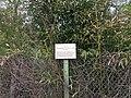 Neuville-sur-Saône - Rue du Pont des Biches - Écriteau emplacement ancien étang.jpg