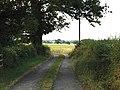 Next to Mount Edgebold - geograph.org.uk - 195486.jpg