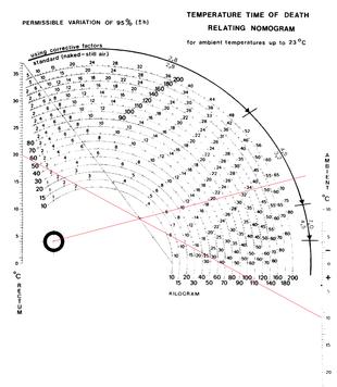 différence d'âge appropriée pour la calculatrice de datation