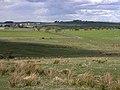 Northumberian landscape - geograph.org.uk - 1274129.jpg