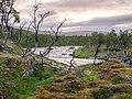 Norwegen Langfjordelva (Laggu) Gamvik 1290368.jpg