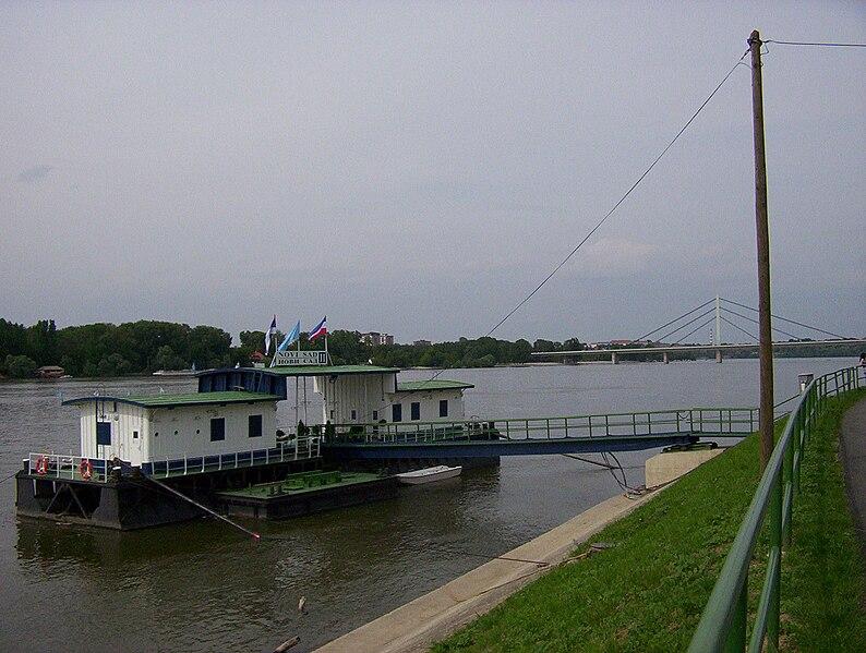 File:Novi Sad Danube.jpg