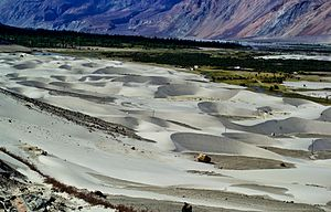 Nubra Valley - Sand Dunes of Nubra valley