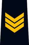 OPP Sergeant.png
