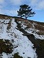 Offa's Dyke Path - geograph.org.uk - 772592.jpg