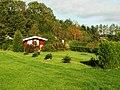 Ogródki działkowe - panoramio.jpg