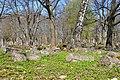 Old Jewish cemetery - panoramio (1).jpg