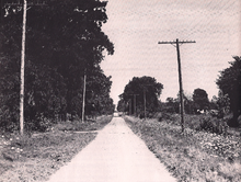 A narrow country road protrudes into the distance, surrounded by trees and farmland on either side.
