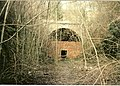 Old Railway Tunnel entrance at Chedworth - geograph.org.uk - 1513026.jpg