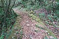 Old road, along the trail from Igalo to Herceg Novi, Montenegro 06.jpg