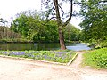 Oleksandria Park (May 2019) 5.jpg