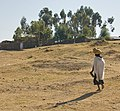 On The Road To Simien Mountains National Park, Ethiopia (2442439081).jpg