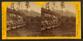 Ore train and van in the Jackson Iron Mine, by Carbutt, John, 1832-1905.png
