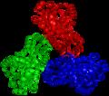Ornithine carbamoyltransferase trimer 1OTH.png