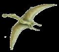 Ornithocheirus BWtr.png