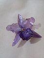 Orquidea escama.jpg